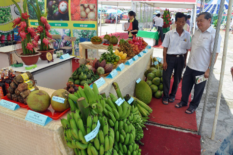 agriculture festival